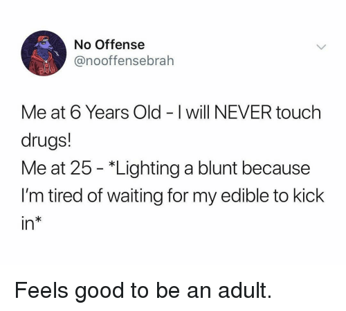 Drugs, Memes, and Good: No Offense  @nooffensebrah  Me at 6 Years Old - I will NEVER touch  drugs!  Me at 25 - *Lighting a blunt because  I'm tired of waiting for my edible to kick  in Feels good to be an adult.