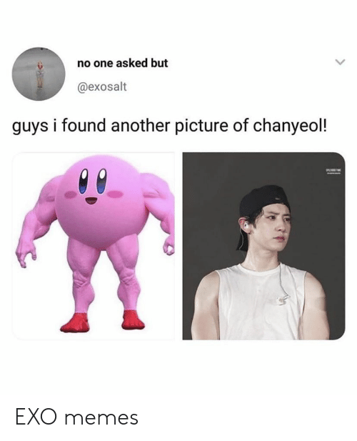 Memes, Exo, and Another: no one asked but  @exosalt  guys i found another picture of chanyeol! EXO memes