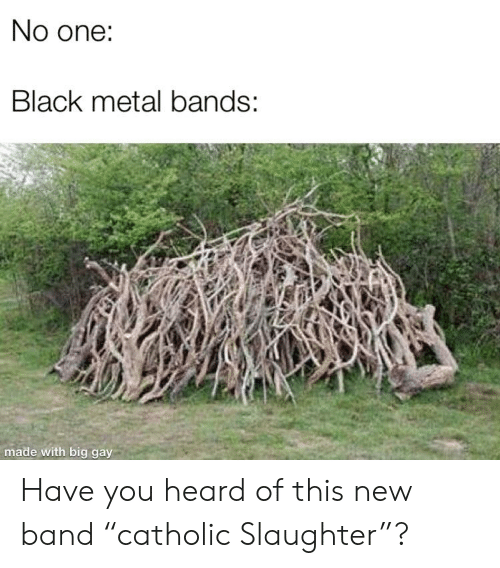 No One Black Metal Bands Made With Big Gay Have You Heard of This