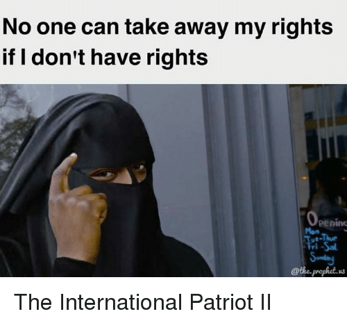 Memes, The Prophet, and 🤖: No one can take away my rights  if don't have rights  Penino  @the prophet. The International Patriot II