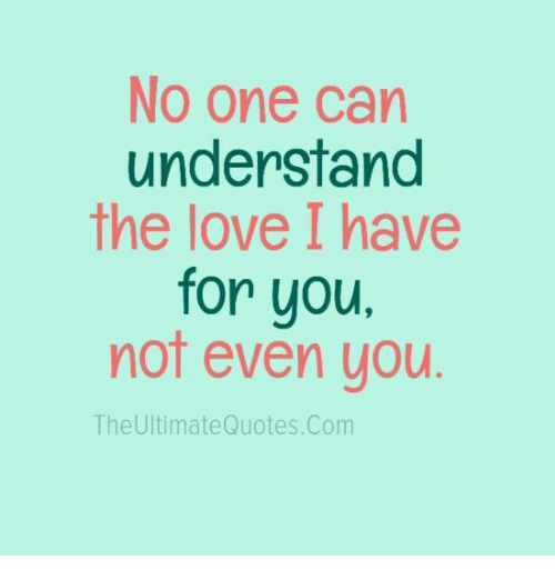 No One Can Understand The Love I Have For You Not Even You The