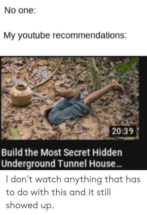 Reddit, youtube.com, and House: No one:  My youtube recommendations:  20:39  Build the Most Secret Hidden  Underground Tunnel House... I don't watch anything that has to do with this and it still showed up.