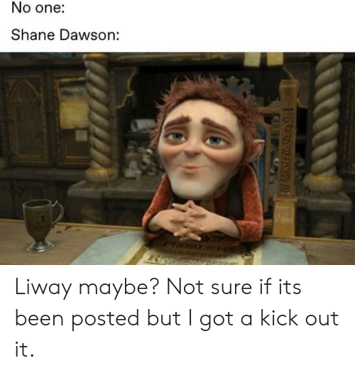 Shane, Been, and Got: No one:  Shane Dawson: Liway maybe? Not sure if its been posted but I got a kick out it.