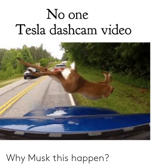 No One Tesla Dashcam Video Why Musk This Happen? | Video Meme on ME ME