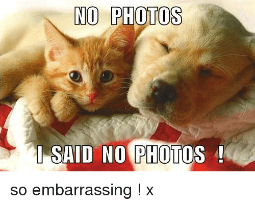 No Photos I Said No Photo So Embarrassing X Meme On Me Me