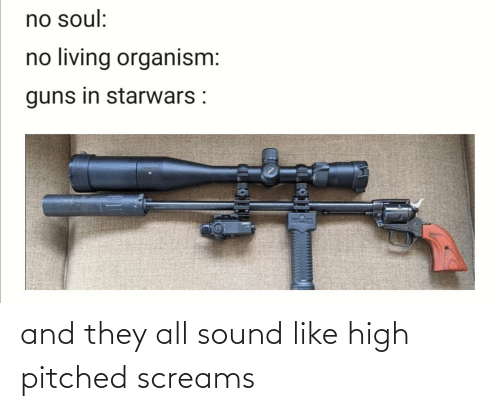 Guns, Reddit, and Living: no soul:  no living organism:  guns in starwars : and they all sound like high pitched screams