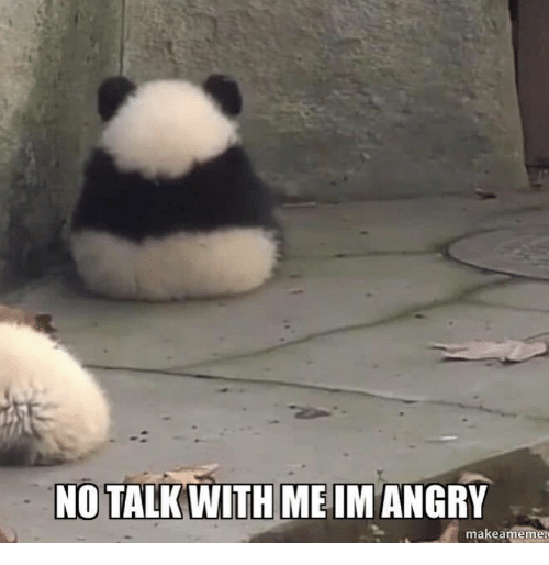 Angry,  No, and Makeameme: NO TALK WITH ME IM ANGRY  makeameme