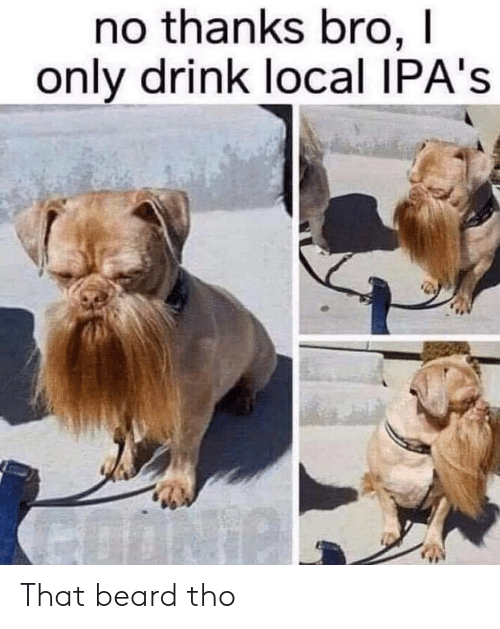 No Thanks Bro I Only Drink Local IPA's That Beard Tho | Beard Meme