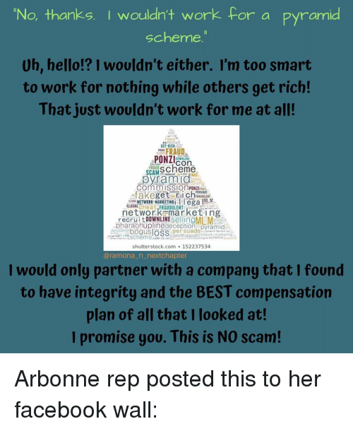 No Thanks I Wouldn't Work for a Pyramid Scheme Uh Hello!? I