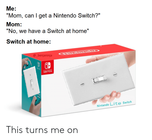 """Nintendo, Home, and Mom: """"No, we have a Switch at home""""  SWTCK  Nintendo Lite Switch  @_benjaninja  SWITCH  """"Mom, can I get a Nintendo Switch?""""  Me:  Mom:  ENDO  Switch at home: This turns me on"""