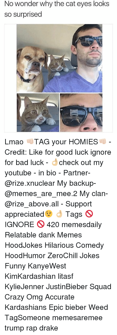 Bad, Crazy, and Dank: No wonder why the cat eyes looks  so surprised Lmao 👊🏻TAG your HOMIES👊🏻 - Credit: Like for good luck ignore for bad luck - 👌🏼check out my youtube - in bio - Partner- @rize.xnuclear My backup- @memes_are_mee.2 My clan- @rize_above.all - Support appreciated😉 👌🏼 Tags 🚫 IGNORE 🚫 420 memesdaily Relatable dank Memes HoodJokes Hilarious Comedy HoodHumor ZeroChill Jokes Funny KanyeWest KimKardashian litasf KylieJenner JustinBieber Squad Crazy Omg Accurate Kardashians Epic bieber Weed TagSomeone memesaremee trump rap drake
