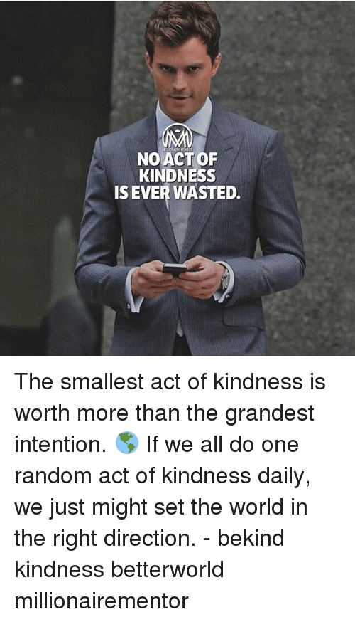 Memes, World, and Kindness: NOACTOF  KINDNESS  IS EVER WASTED. The smallest act of kindness is worth more than the grandest intention. 🌎 If we all do one random act of kindness daily, we just might set the world in the right direction. - bekind kindness betterworld millionairementor