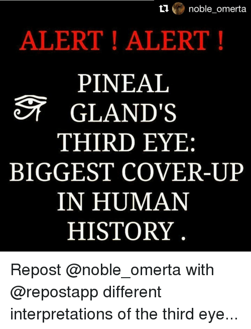 Memes, History, and 🤖: noble omerta  ALERT ALERT!  PINEAL  GLAND'S  THIRD EYE  BIGGEST COVER-UP  IN HUMAN  HISTORY Repost @noble_omerta with @repostapp different interpretations of the third eye...