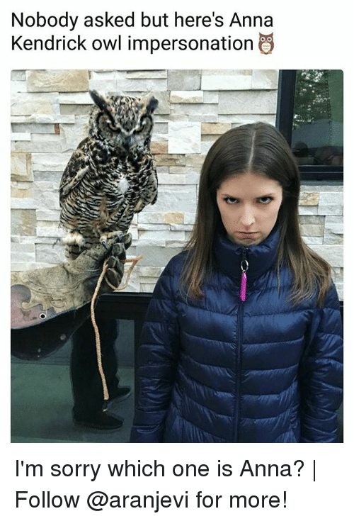 Anna, Anna Kendrick, and Memes: Nobody asked but here's Anna  Kendrick owl impersonation I'm sorry which one is Anna? | Follow @aranjevi for more!