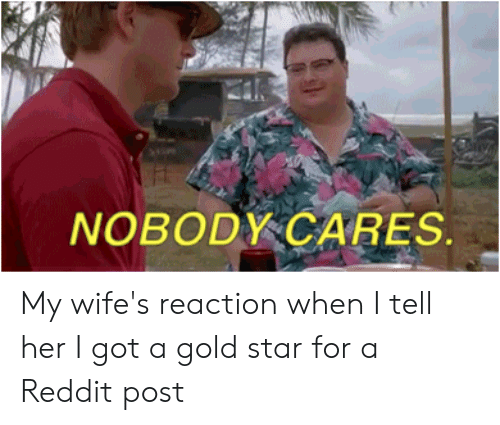 Reddit, Star, and Reactiongifs: NOBODY CARES. My wife's reaction when I tell her I got a gold star for a Reddit post
