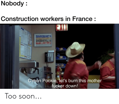 Reddit, Soon..., and France: Nobody:  Construction workers in France:  EAI  Cmon Pookie, let's burn this mother  fucker down! Too soon...