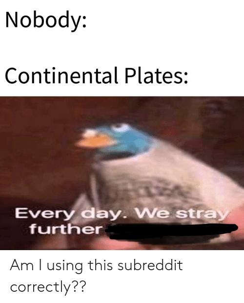 History, Continental, and Day: Nobody:  Continental Plates:  Every day. We stray  further Am I using this subreddit correctly??