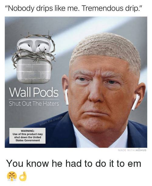 """Memes, United, and Government: """"Nobody drips like me. Tremendous drip.""""  Wall Pods  Shut Out The Haters  adam.the.creator  WARNING  Use of this product may  shut down the United  States Government  MADE WITH MOMUS You know he had to do it to em 😤👌"""