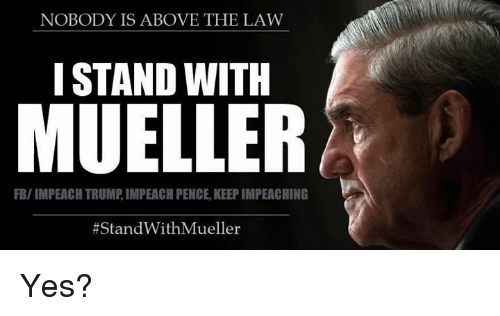 NOBODY IS ABOVE THE LAW I STAND WITH MUELLER FBIMPEACH TRUMP