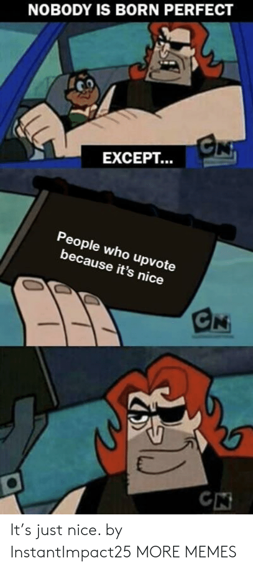 Dank, Memes, and Target: NOBODY IS BORN PERFECT  EXCEPT...  People who upvote  because it's nice It's just nice. by InstantImpact25 MORE MEMES