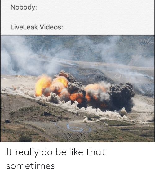 Nobody LiveLeak Videos It Really Do Be Like That Sometimes