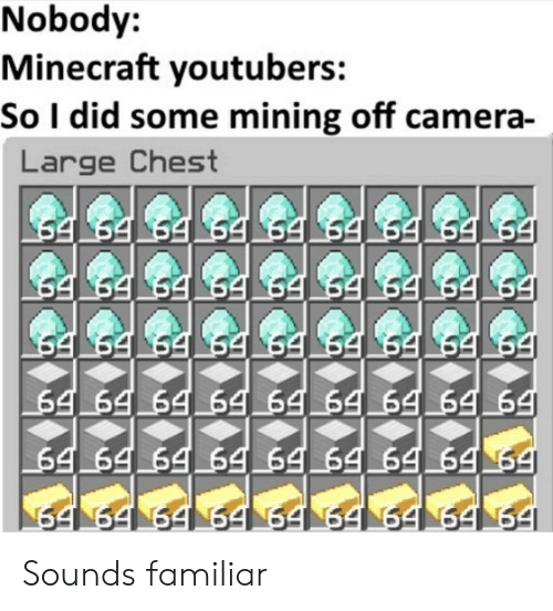 Nobody Minecraft Youtubers So I Did Some Mining Off Camera