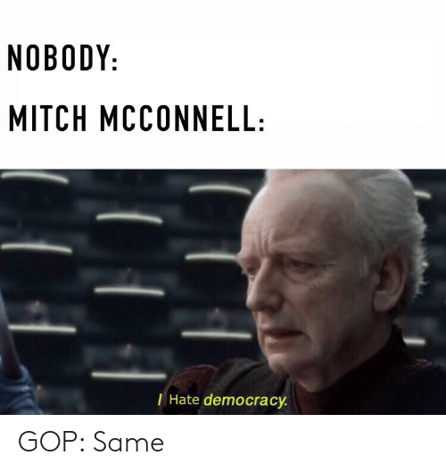 Politics, Democracy, and Mitch McConnell: NOBODY:  MITCH MCCONNELL:  Hate democracy GOP: Same