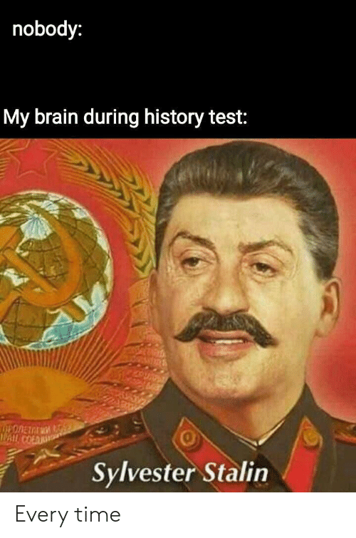 Brain, History, and Test: nobody:  My brain during history test:  0  Sylvester Stalin Every time