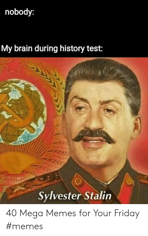 Friday, Memes, and Brain: nobody:  My brain during history test:  I PAIİ.  0  Sylvester Stalin 40 Mega Memes for Your Friday #memes