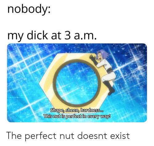 Dick, Shape, and This: nobody  my dick at 3 a.nm  Shape, sheen, hardnes8.cD  This nut is perfect in every way8 The perfect nut doesnt exist