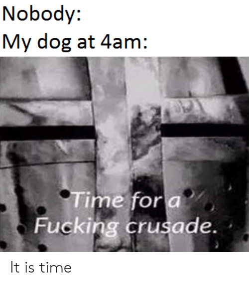 Fucking, Reddit, and Time: Nobody:  My dog at 4am:  Time for a  Fucking crusade. It is time