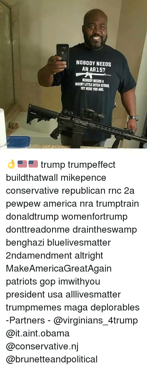 All Lives Matter, America, and Bitch: NOBODY NEEDS  AN AR15?  NOBODY NEEDSA  WHINY LITTLE BITCH EITHER  YET HERE YOUARE. 👌🇺🇸🇺🇸 trump trumpeffect buildthatwall mikepence conservative republican rnc 2a pewpew america nra trumptrain donaldtrump womenfortrump donttreadonme draintheswamp benghazi bluelivesmatter 2ndamendment altright MakeAmericaGreatAgain patriots gop imwithyou president usa alllivesmatter trumpmemes maga deplorables -Partners - @virginians_4trump @it.aint.obama @conservative.nj @brunetteandpolitical