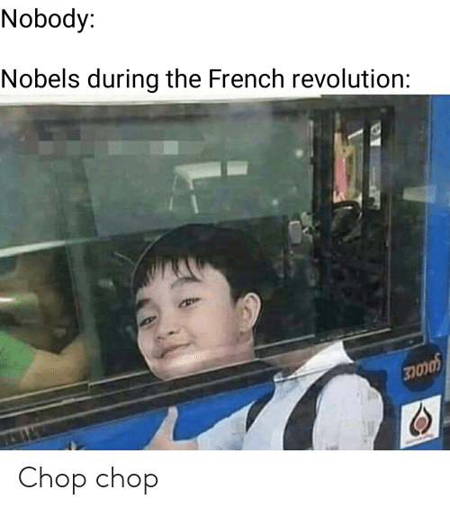 History, Revolution, and French: Nobody:  Nobels during the French revolution: Chop chop