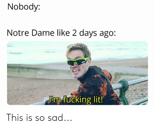 Fucking, Lit, and Notre Dame: Nobody:  Notre Dame like 2 days ago:  'rn fucking lit! This is so sad...