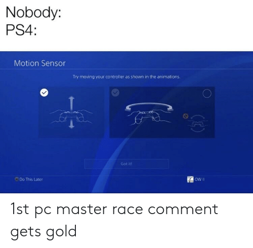 Ps4, Dank Memes, and Race: Nobody:  PS4:  Motion Sensor  Try moving your controller as shown in the animations.  Got it!  ow Il  Do This Later 1st pc master race comment gets gold