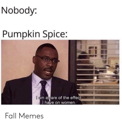 Fall, Memes, and Pumpkin: Nobody:  Pumpkin Spice:  l am aware of the effect  have on women Fall Memes
