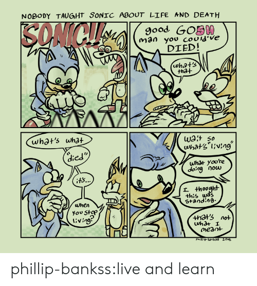 Life, Target, and Tumblr: NOBODY TAUGHT SONIC ABOUT LIFE AND DEATH  9ood GOS00  DIED!  tha+  whot's what  Wat so  died  what yoore  dong Oocu  +h:s wa?  Standin9-  when  you Stap  l'ving  +hots not  meant  Phill ip-banksS 201s phillip-bankss:live and learn