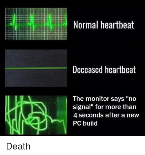 Normal Heartbeat Deceased Heartbeat the Monitor Says No