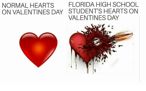 School, Valentine's Day, and Florida: NORMAL HEARTS FLORIDA HIGH SCHOOL  ON VALENTINES DAY STUDENT'S HEARTS ONN  VALENTINES DAY