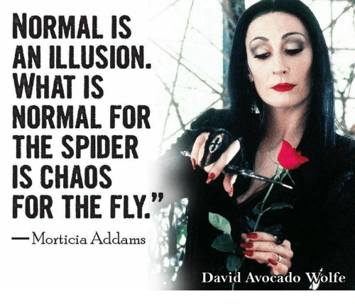 Normal is an illusion what is normal for the spider is chaos for the normal is an illusion altavistaventures Choice Image