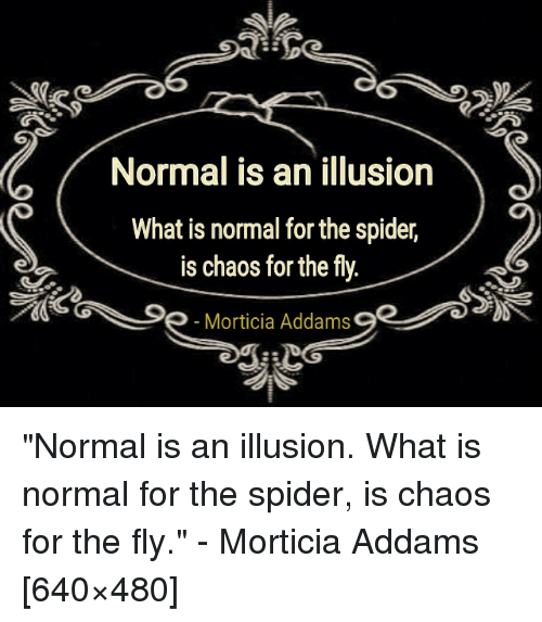 Normal is an illusion what is normal for the spider is chaos for the spider what is and quotesporn normal is an illusion what is normal for altavistaventures Choice Image