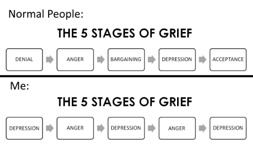 25 Best Stages Of Grief Memes Trump Protesters Memes Trump