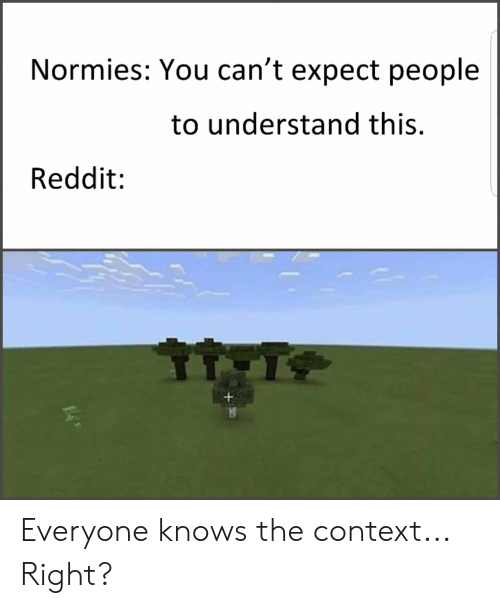 Normies You Can't Expect People to Understand This Reddit