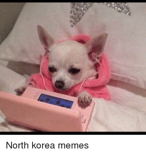 North Korea Meme
