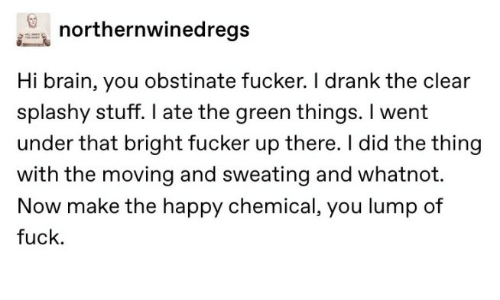 Brain, Fuck, and Happy: northernwinedregs  Hi brain, you obstinate fucker. I drank the clear  splashy stuff. I ate the green things. I went  under that bright fucker up there. I did the thing  with the moving and sweating and whatnot.  Now make the happy chemical, you lump of  fuck