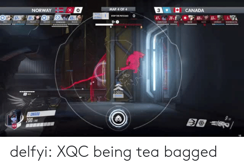Bailey Jay, Gif, and Tumblr: NORWAY&O  MAP 4  CANADA  0  3  200 delfyi:  XQC being tea bagged