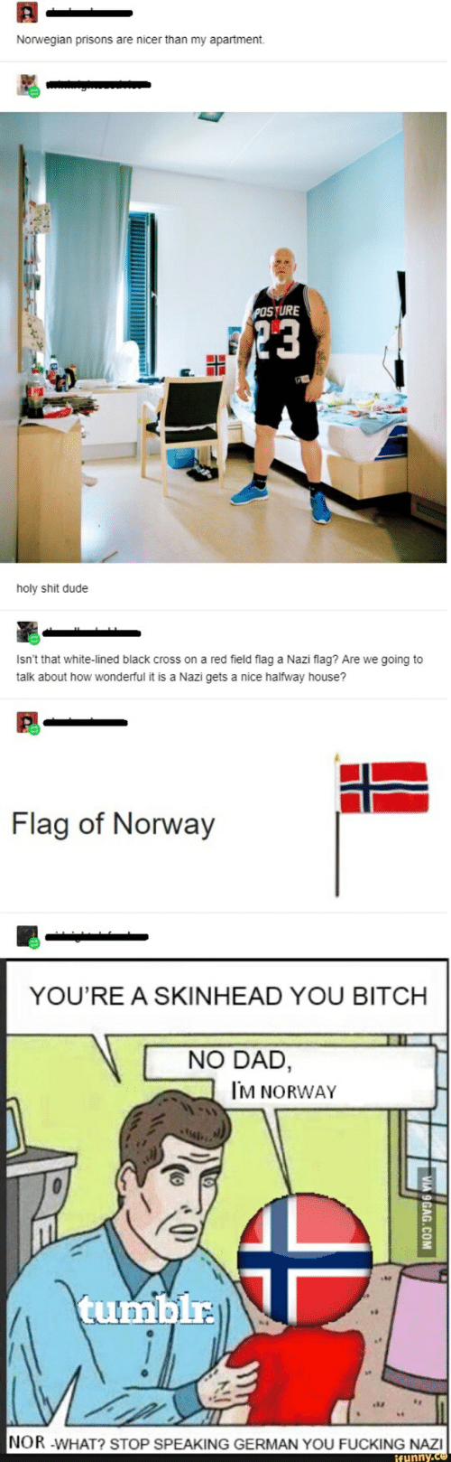 Bitch, Dad, and Dude: Norwegian prisons are nicer than my apartment.  POSTURE  holy shit dude  Isn't that white-lined black cross on a red field flag a Nazi flag? Are we going to  talk about how wonderful it is a Nazi gets a nice halfway house?  Flag of Norway  YOU'RE A SKINHEAD YOU BITCH  NO DAD,  M NORWAY  tumbir  NOR -WHAT? STOP SPEAKING GERMAN YOU FUCKING NAZI  funny