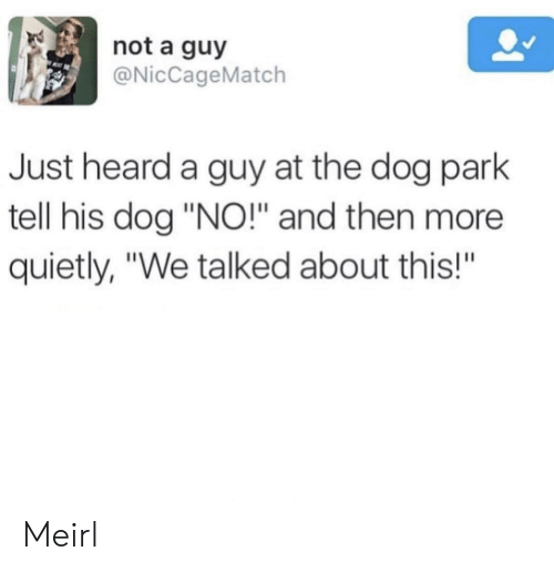 """MeIRL, Dog, and Park: not a guy  @NicCageMatch  Just heard a guy at the dog park  tell his dog """"NO!"""" and then more  quietly, """"We talked about this!""""  BA Meirl"""