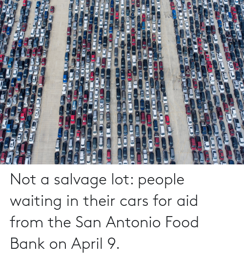 Cars, Food, and Bank: Not a salvage lot: people waiting in their cars for aid from the San Antonio Food Bank on April 9.