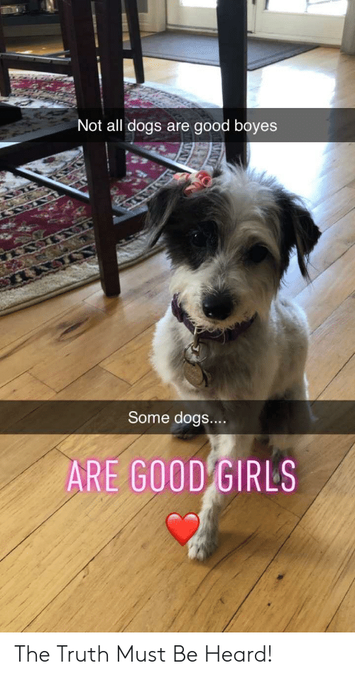 Dogs, Girls, and Good: Not all dogs are good boyes  Some dogs...  ARE GOOD GIRLS The Truth Must Be Heard!